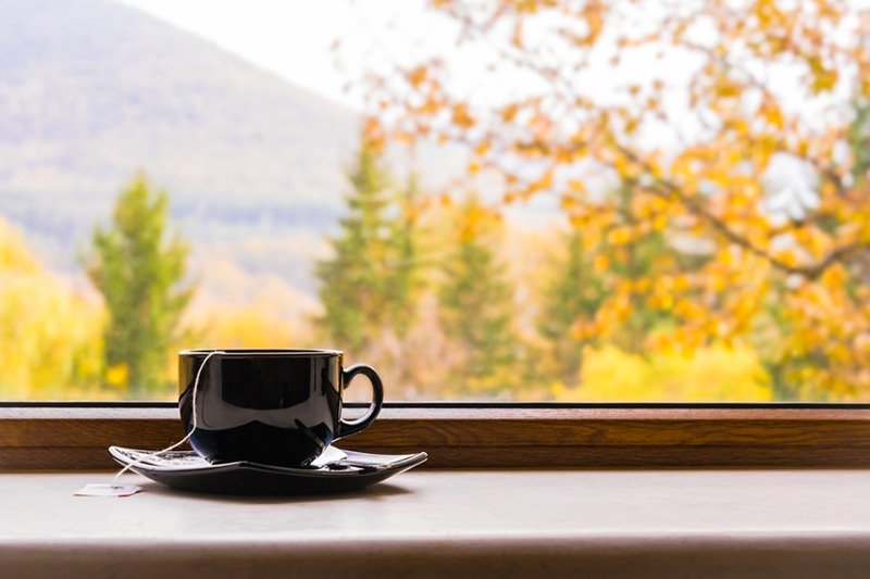 A cup of tea in front of a window with autumn.